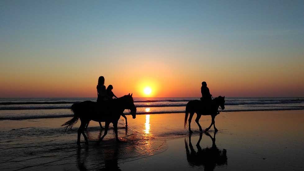 Horse Riding | Holiday Inn Resort Baruna Bali